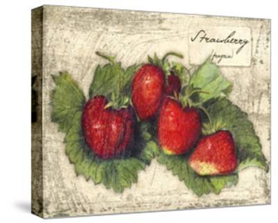 Fresco Fruit XII-Kate Ward Thacker-Stretched Canvas Print