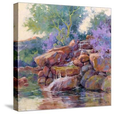Desert Stream-Julie G^ Pollard-Stretched Canvas Print