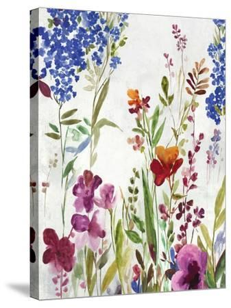 Spring Field-Asia Jensen-Stretched Canvas Print
