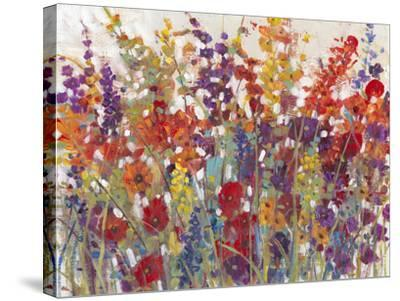 Variety of Flowers II-Tim O'toole-Stretched Canvas Print