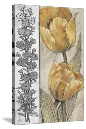 Ochre & Grey Tulips IV-Tim O'toole-Stretched Canvas Print