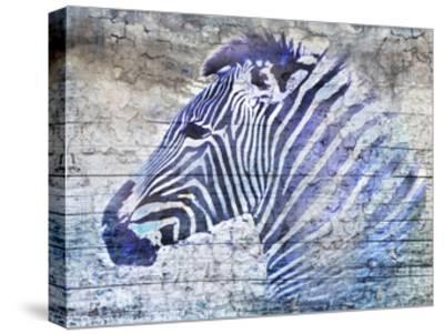 Purple Zebra-Surma & Guillen-Stretched Canvas Print