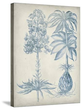 Blue Fresco Floral I-Vision Studio-Stretched Canvas Print