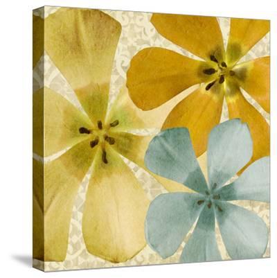 Springtime Glow II-Alonzo Saunders-Stretched Canvas Print