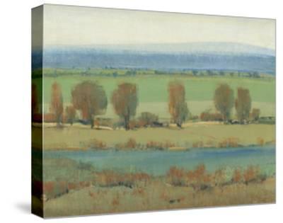 Flat Terrain I-Tim O'toole-Stretched Canvas Print