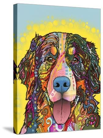 Bernese Mountain Dog-Dean Russo-Stretched Canvas Print