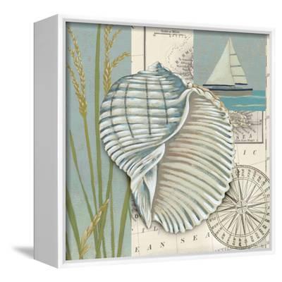 Seaside Shell I-Chariklia Zarris-Framed Stretched Canvas Print