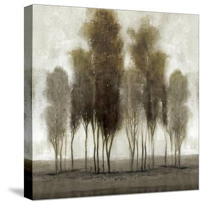 Neutral Scape--Stretched Canvas Print