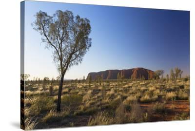 Uluru (UNESCO World Heritage Site), Uluru-Kata Tjuta National Park, Northern Territory, Australia-Ian Trower-Stretched Canvas Print