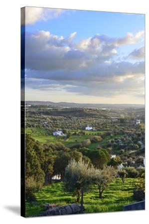 Farms in the vast plains of Alentejo, Portugal-Mauricio Abreu-Stretched Canvas Print