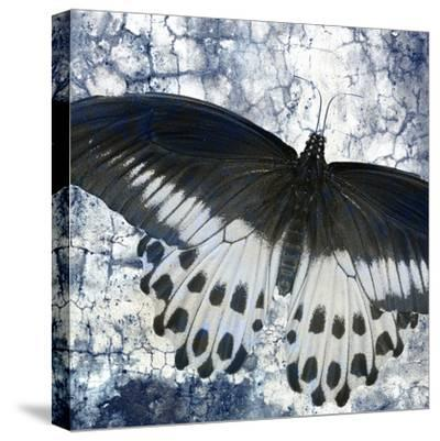 Butterfly Blues 2-Kimberly Allen-Stretched Canvas Print