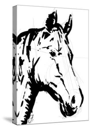 Sketched horse-OnRei-Stretched Canvas Print