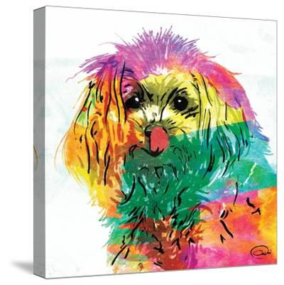 Wet Nose Rainbow-OnRei-Stretched Canvas Print