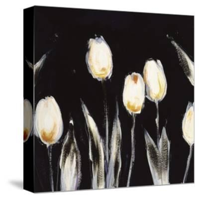 Succulent Tulips-Cheryl Roberts-Stretched Canvas Print