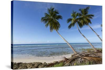 Hastings Beach, Christ Church, Barbados, West Indies, Caribbean, Central America-Frank Fell-Stretched Canvas Print
