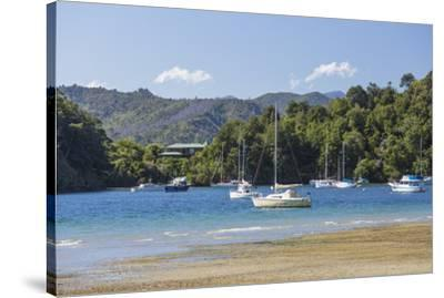 Yachts moored in the sheltered harbour, Ngakuta Bay, near Picton, Marlborough, South Island, New Ze-Ruth Tomlinson-Stretched Canvas Print