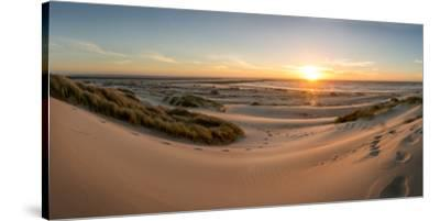 Sand dunes, grass, and driftwood at sunset on the Oregon coast, Oregon, United States of America, N-Tyler Lillico-Stretched Canvas Print