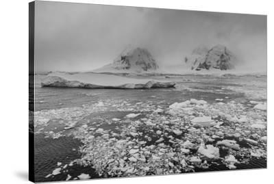 Icebergs in the Herrera Channel, Antarctica, Polar Regions-Sergio Pitamitz-Stretched Canvas Print