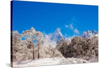 Peak of Mount Everest with snow covered forest, Himalayas, Nepal, Asia-Laura Grier-Stretched Canvas Print