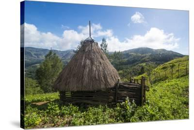 Traditional house in the mountains, Maubisse, East Timor, Southeast Asia, Asia-Michael Runkel-Stretched Canvas Print
