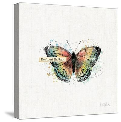 Thoughtful Butterflies I-Katie Pertiet-Stretched Canvas Print