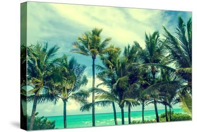 Tropical Palm Trees on the Miami Beach near the Ocean, Florida, Usa, Retro Styled-EllenSmile-Stretched Canvas Print