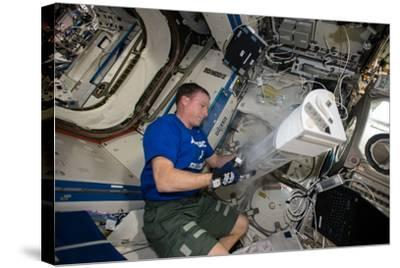 Astronaut Works with the Minus Eighty-Degree Laboratory Freezer for an Iss Experiment-Terry Virts-Stretched Canvas Print