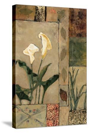 Nature's Bounty I-Bagnato Judi-Stretched Canvas Print