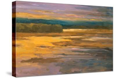 Peaceful II-Stevens Allayn-Stretched Canvas Print