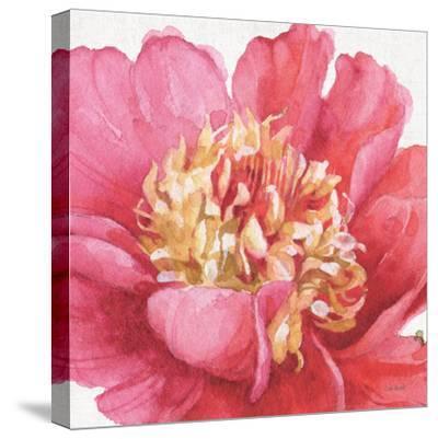 Pink Garden V-Lisa Audit-Stretched Canvas Print