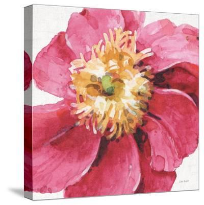 Pink Garden VI-Lisa Audit-Stretched Canvas Print