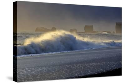 Iceland, Iceland, the South, Mydralur, Vik, Peninsula Dyrholaey-Bernd Rommelt-Stretched Canvas Print