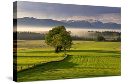 Germany, Bavaria, Faistenberg, View at Zwiesel, Benediktenwand, Bavarian Alpine Foothills-Bernd Rommelt-Stretched Canvas Print