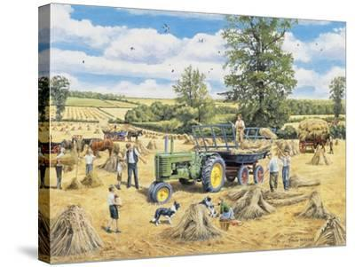 A Family Harvest-Trevor Mitchell-Stretched Canvas Print