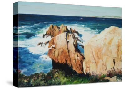 Cliff at La Coruna, Spain-Anthony Fandino-Stretched Canvas Print