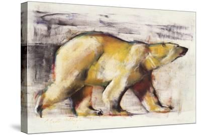 Polar Bear-Mark Adlington-Stretched Canvas Print