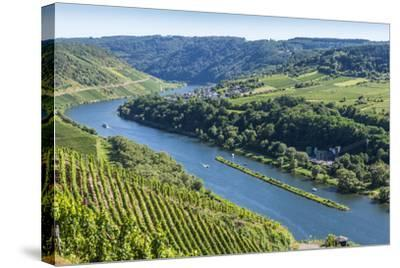 Europe, Germany, Rhineland-Palatinate, District Cochem-Zell-Udo Bernhart-Stretched Canvas Print