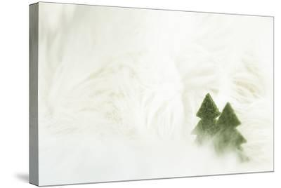 Two Christmas Trees in Stylised Winter Landscape - Softy and Softly-Petra Daisenberger-Stretched Canvas Print