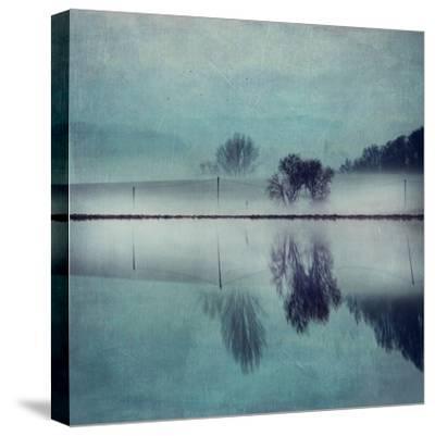 Misty Mirror-Dirk Wuestenhagen-Stretched Canvas Print