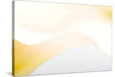 Close-up of a Calla Lily flower--Stretched Canvas Print