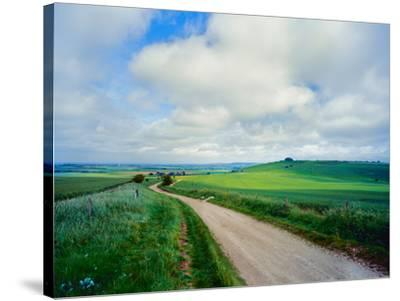 View of road passing through a field, United Kingdom--Stretched Canvas Print