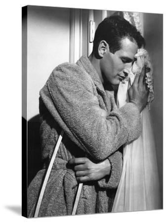CAT ON A HOT TIN ROOF, 1958 directed by RICHARD BROOKS Paul Newman (b/w photo)--Stretched Canvas Print