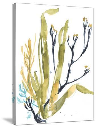 Reef Illusion II-Jennifer Goldberger-Stretched Canvas Print