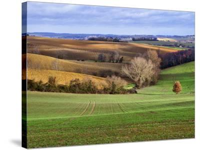 Pastoral Countryside XVII-Colby Chester-Stretched Canvas Print