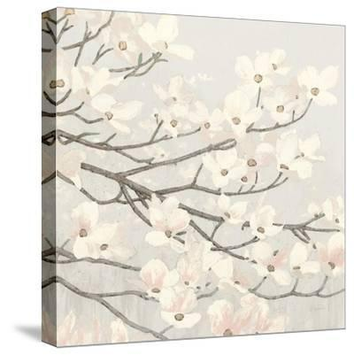 Dogwood Blossoms II Gray-James Wiens-Stretched Canvas Print