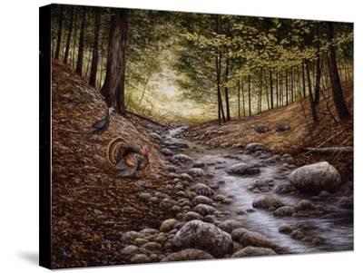 Gobbler Run-John Morrow-Stretched Canvas Print