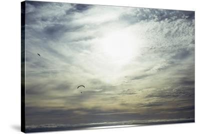 Freedom-Joseph S Giacalone-Stretched Canvas Print