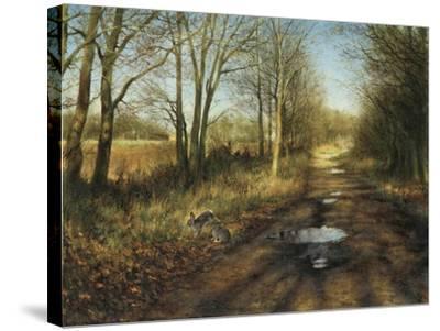 APRIL-Rien Poortvliet-Stretched Canvas Print