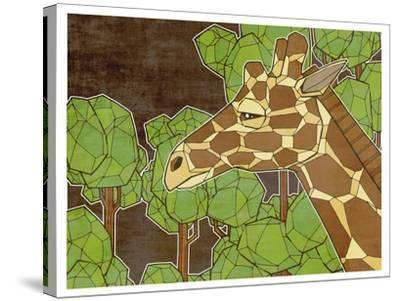 Canopy Explorer-Ric Stultz-Stretched Canvas Print