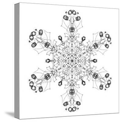 Snowflake 5-RUNA-Stretched Canvas Print